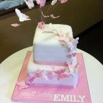 pink butterfly cake 2 tier